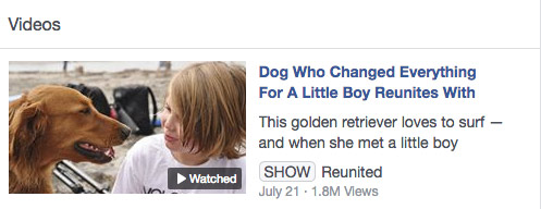 """Going the Distance a Film by David L. Brown is featured by a """"Dodo Reunited"""" video"""