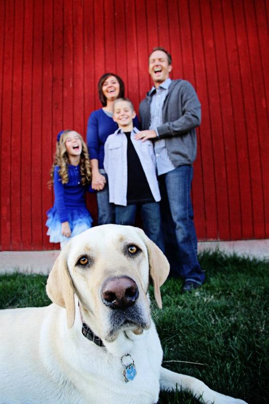 fun family photography, layton family photographer, utah family photographer, kaysville photographer, family photographer utah