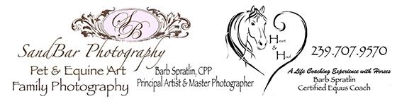 SandBar Photography