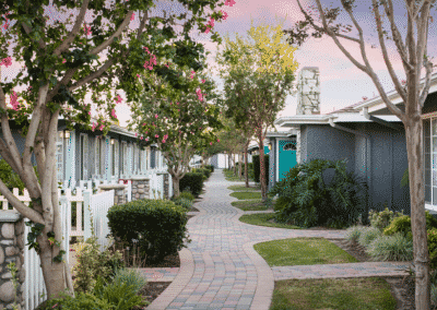 Garden pathway with trees and grass at sunset