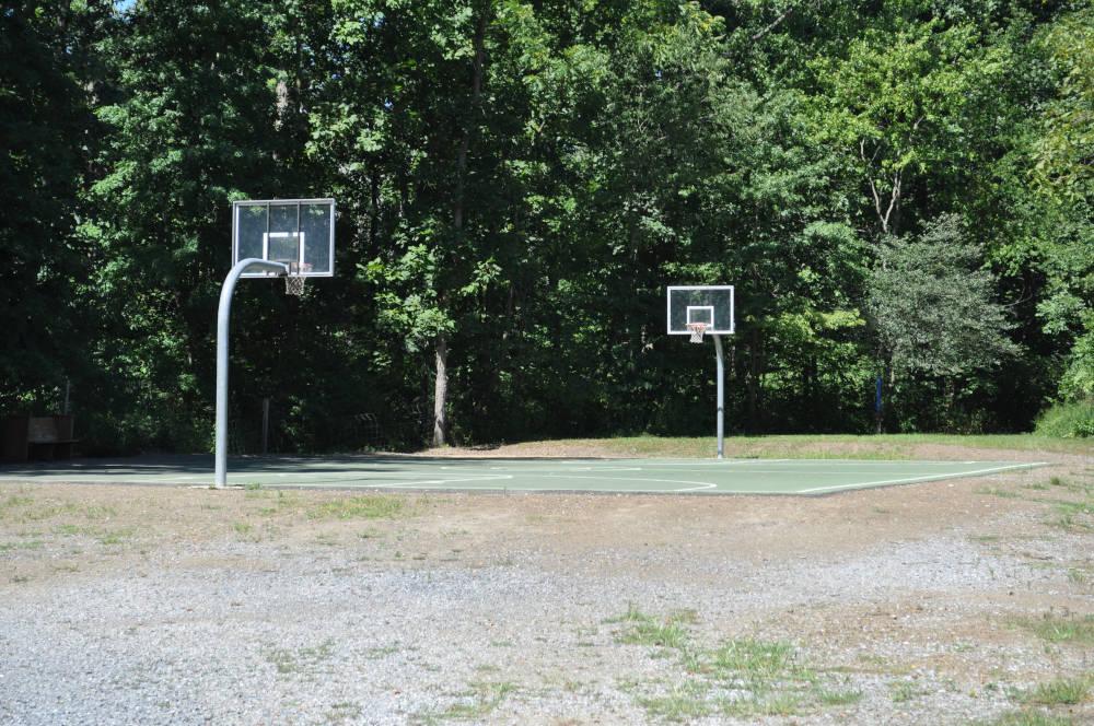 levitz-basketball