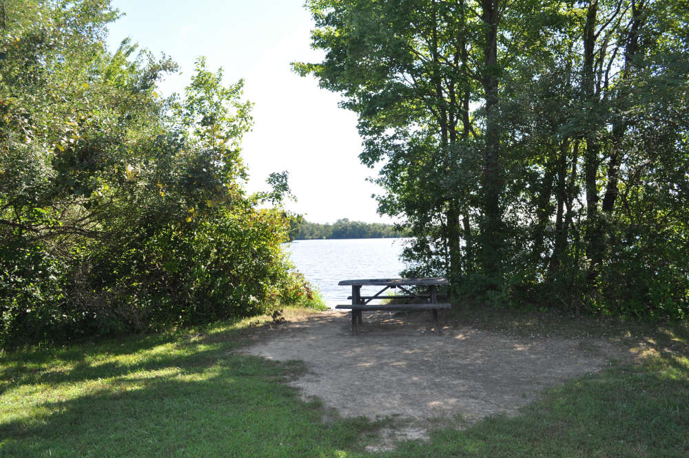 memorial-lake-picnic