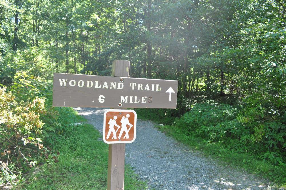 memorial-lake-trail-sign