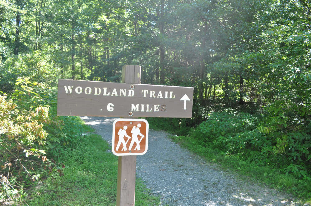 memorial-lake-trail-sign