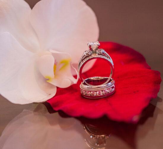 Kendall Cutler Ridge Dadeland Wedding event planner