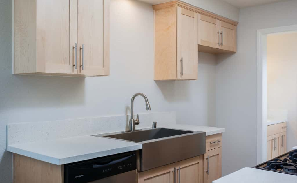 Stainless Steel Kitchen Sink and cabinetry
