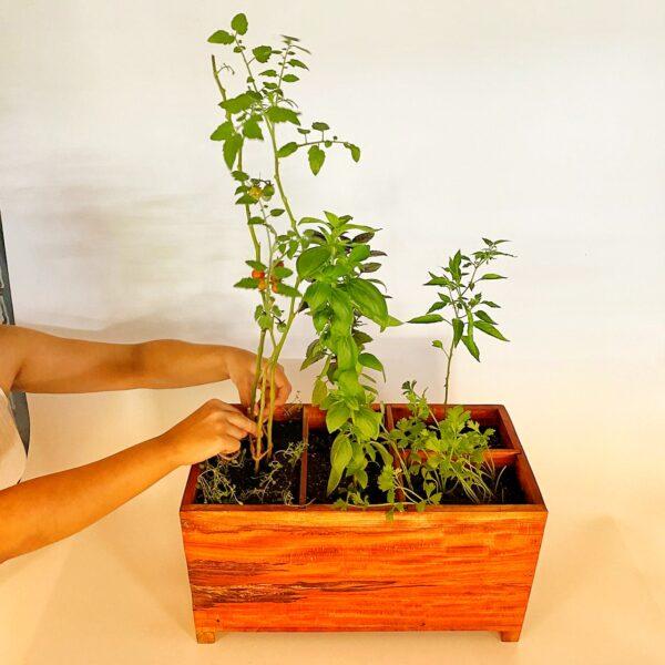 Neem Wood Kitchen Garden
