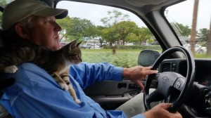 ted and cat driving