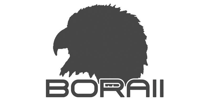 BORAII Holsters