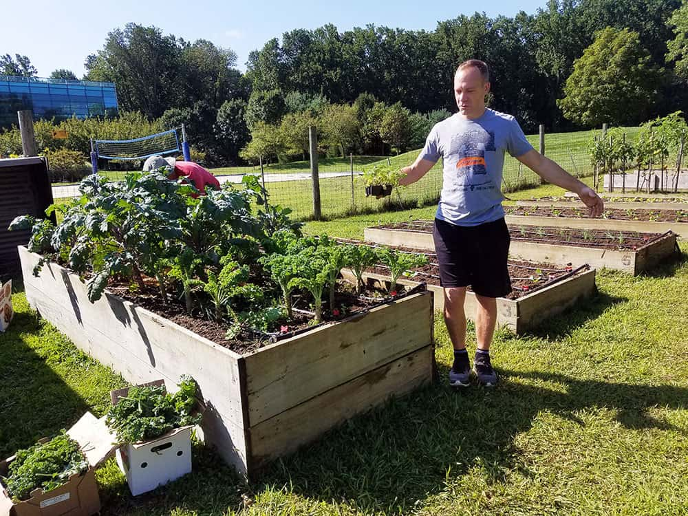 Trellis For Tomorrow Program: Food For All