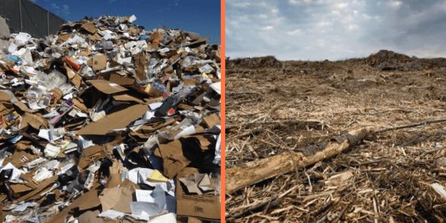 Paper Waste and Deforestation