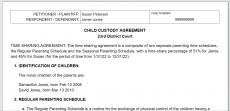 Divorce/Custody decree