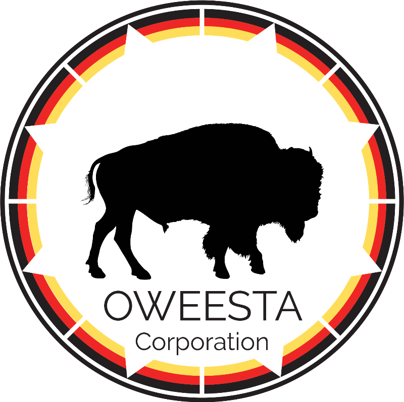 Check out Oweesta's upcoming webinars partnering with the Native Learning Center!