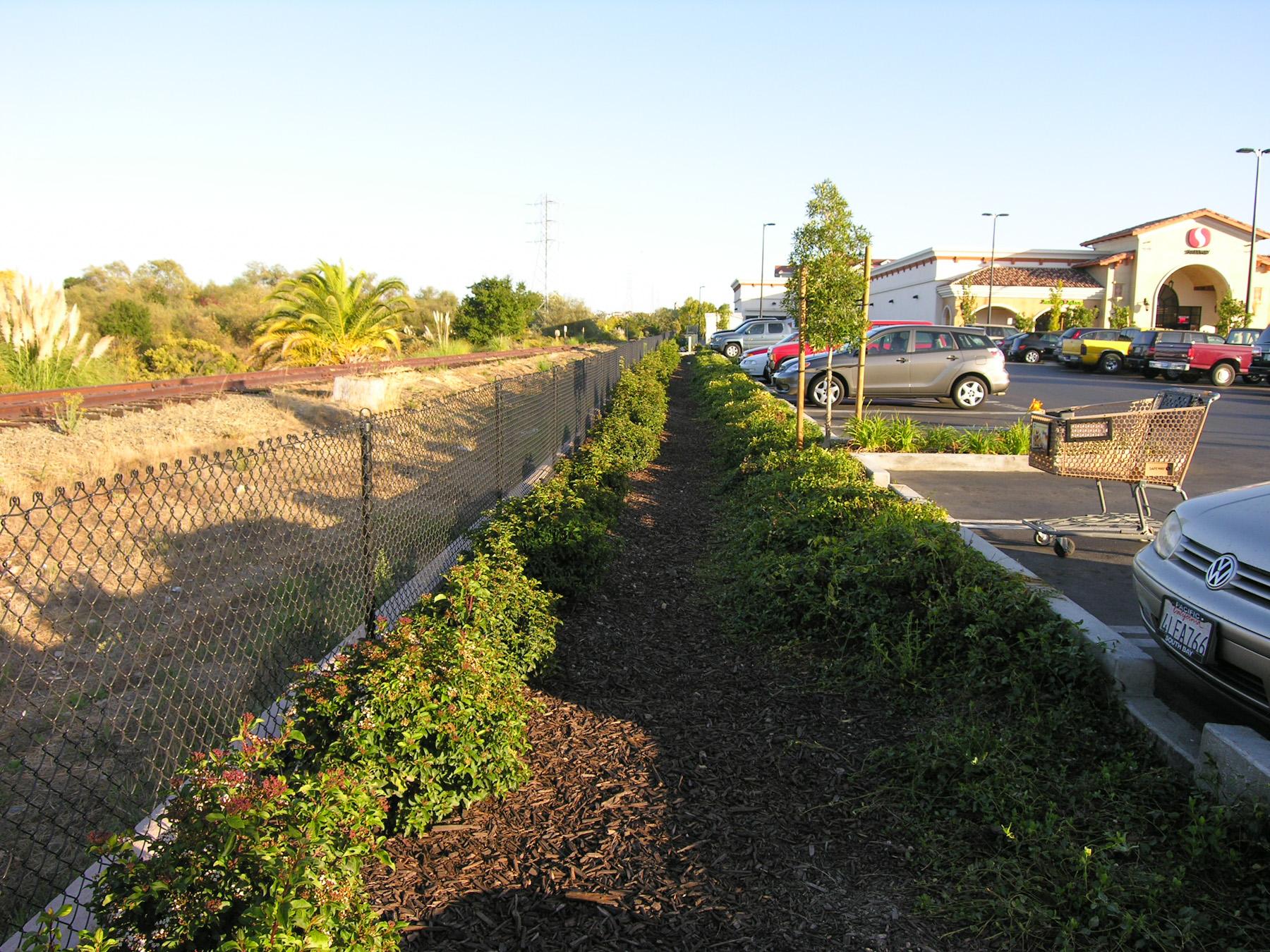 Hamilton Marketplace bioretention areas and curb cuts