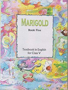 Marigold – NCERT