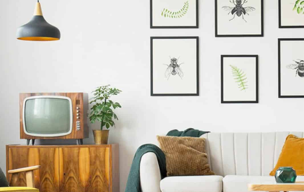 modern living room interior with sofa, armchair, TV and painting