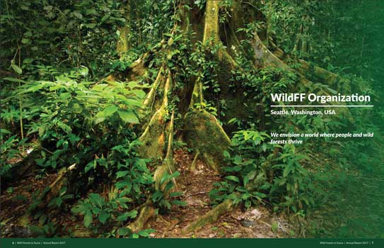 Wild Forest and Fauna Annual Report
