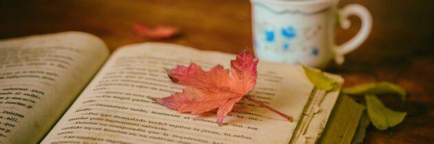 """Libro: """"El Proyecto Esposa"""""""