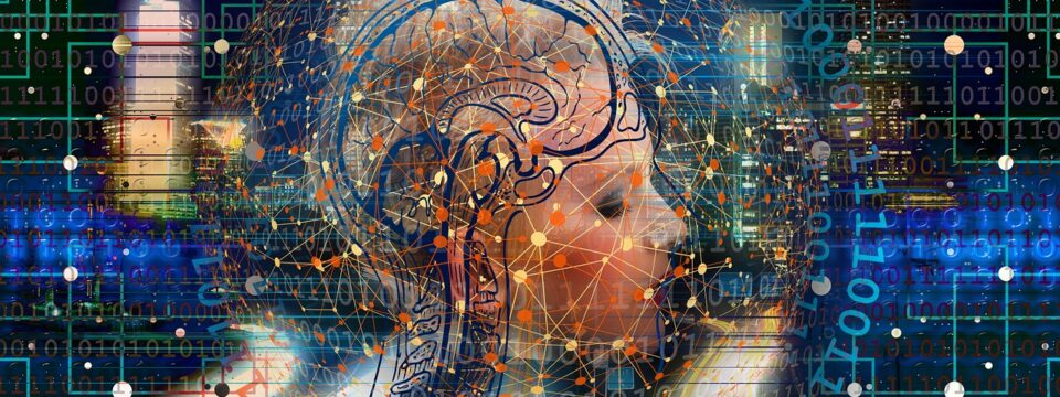 ¿Cómo funciona la Neuroplasticidad?
