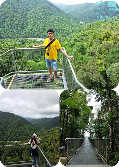 圖片-瑪姆雨林天空步道