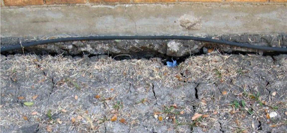 gaps in the soil
