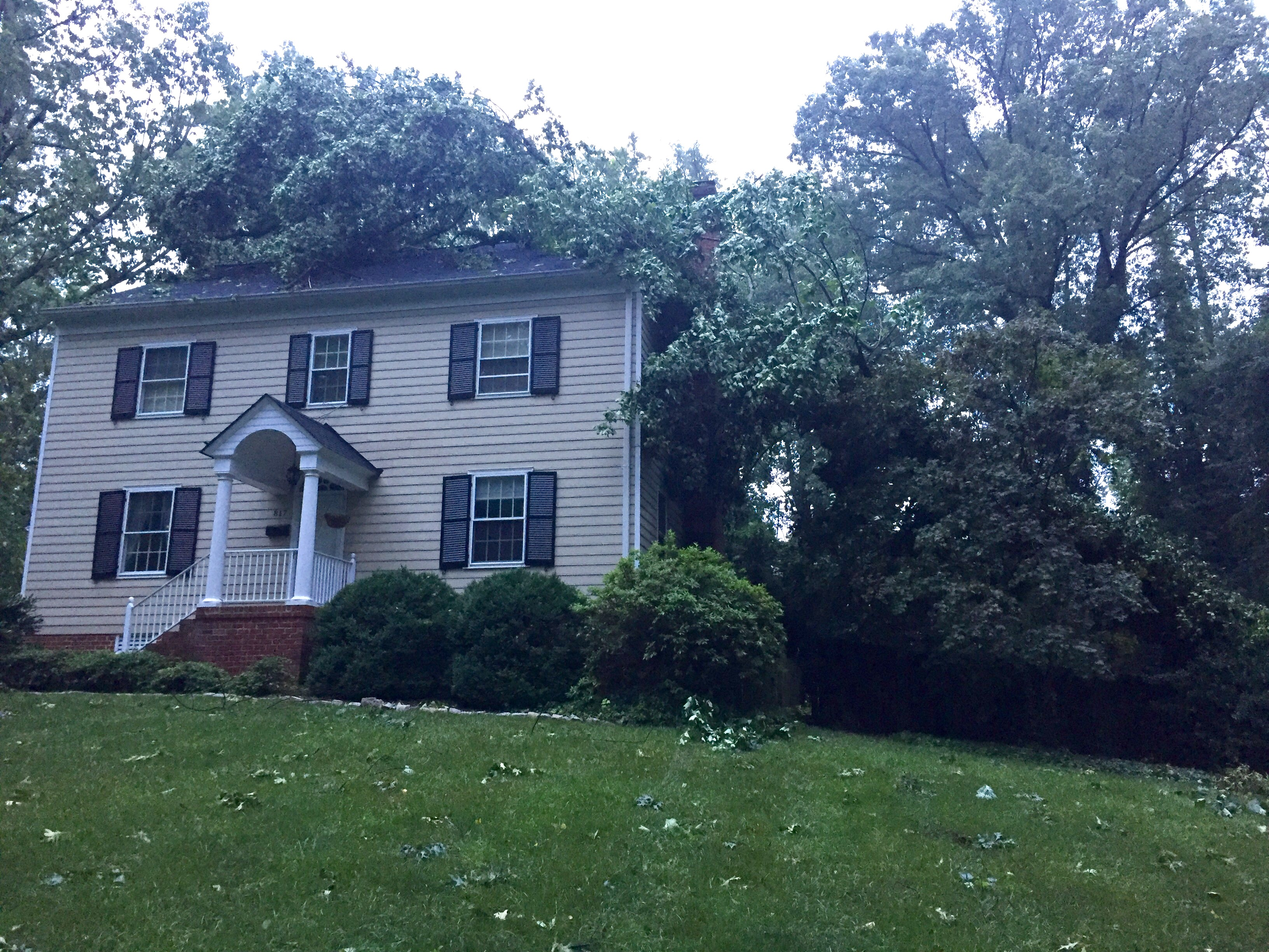 That Time A Tree Fell On the House