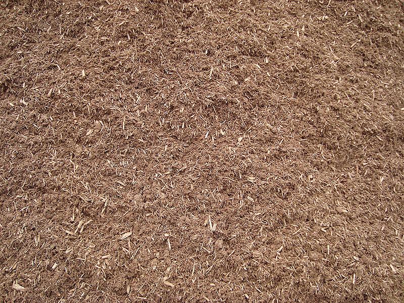 Spruce-Mulch