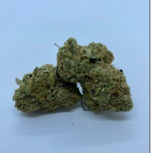 Zombie Strain - dispensary near me London Ontario Cannabis Same Day Delivery