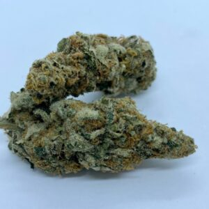 Trophy Wife Strain - dispensary near me London Ontario Cannabis Same Day Delivery