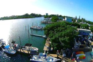 Photo of marina in Marathon, Florida with boat rentals tied up at the dock in the bay and trees in the foreground on a clear sunny day