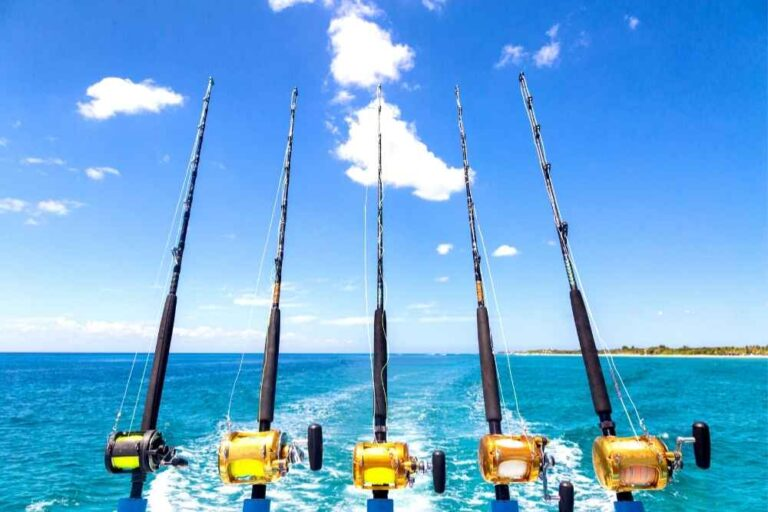 Five fishing rods cast into the ocean in the Florida Keys
