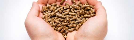 Switching to Pellets Reduces CO2 emissions by 90% & Saves 50% on Heating Costs