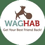 WagHab: Asheville Dog Rehabilitation