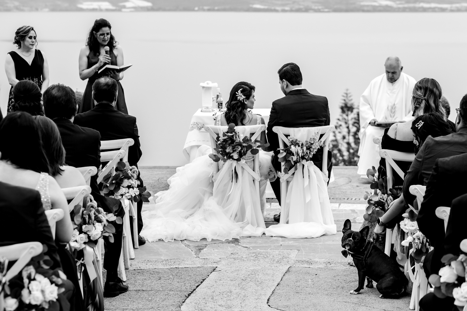 wedding ceremony bride and groom sit and a dog look on the camera