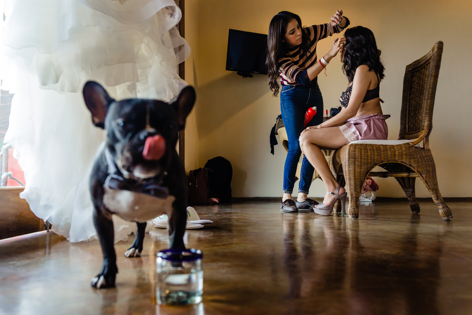 bride gettin ready with a dog looking in the camera, bride having make up