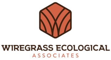 wiregrass-ecological-associates