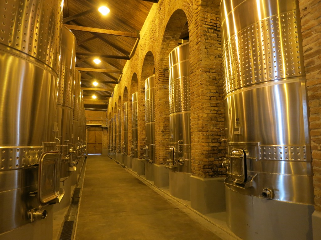 The Fermentation Room of Terrazas de los Andes