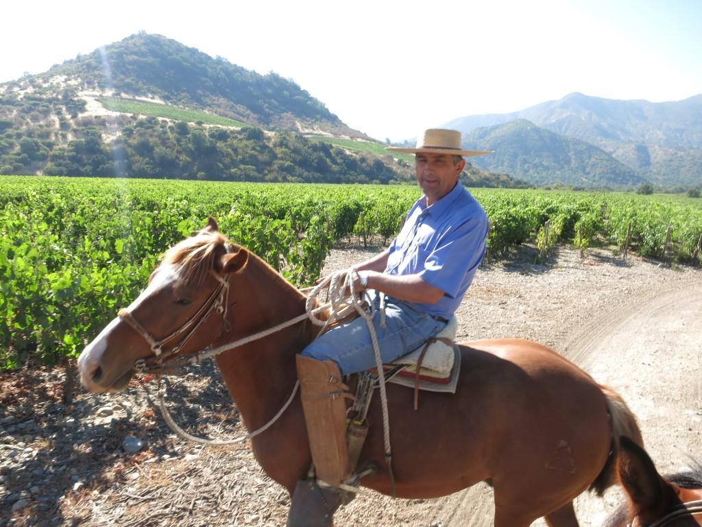 Horseback Riding through the vineyards of Viña Vik