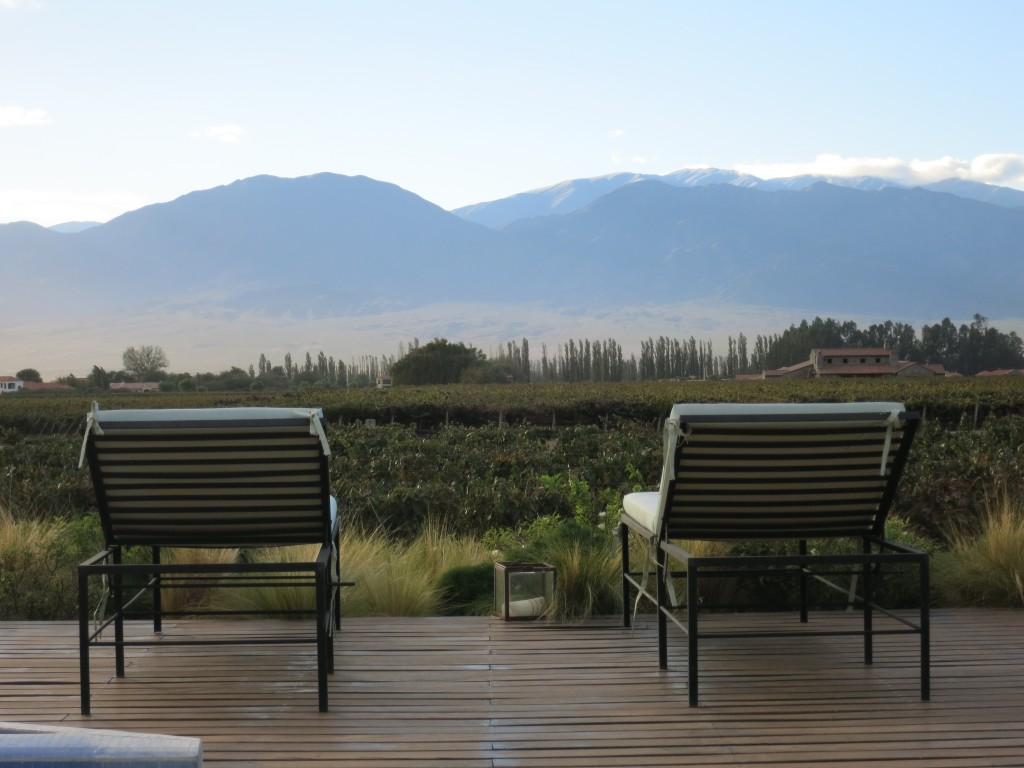 Overlooking the vineyards in Cafayate