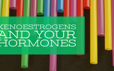 Xenoestrogens and your Hormones
