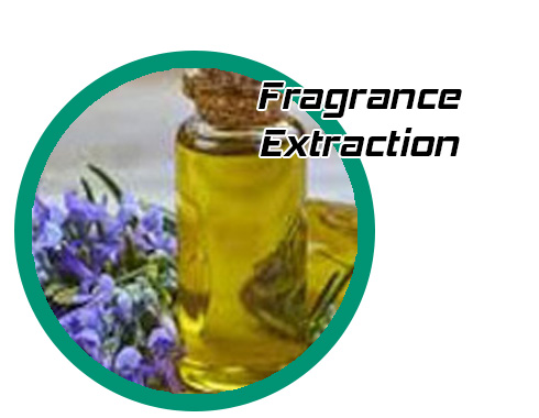 fragrances_grid