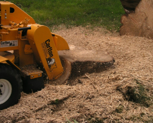 kellys-stump-grinding-cutting-newburgh-in-evansville-in