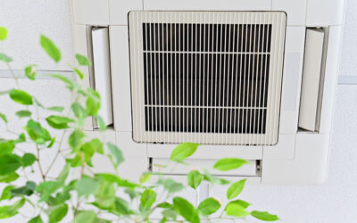 Four Helpful Hints to Improve Air Quality in Your Apartment