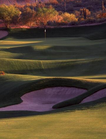 Perennial Ryegrass on a golf course