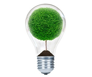Light bulb for Whats New link