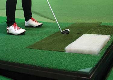 swingplate   Swing Zone Golf