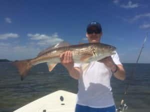 Giant Redfish in Tampa Florida Fishing Charters