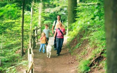 4 Family-Friendly Summer Activities in La Habra