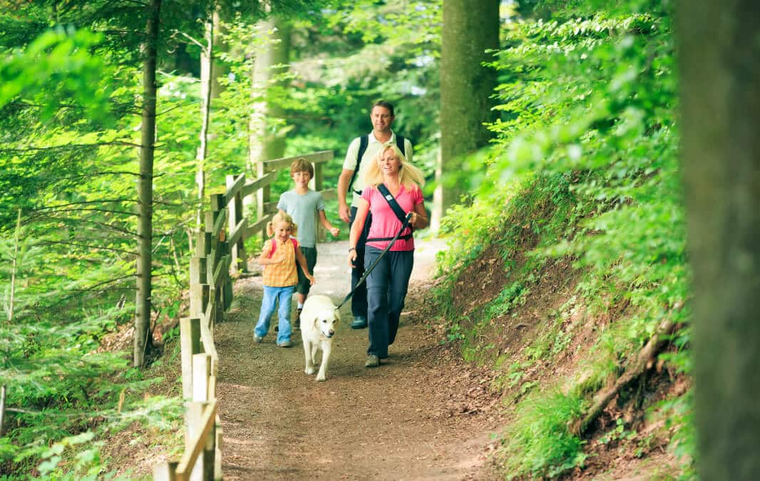 Family walking with a dog