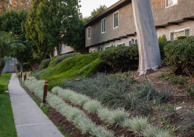 Paved Walkway along the complex with landscaping and grass